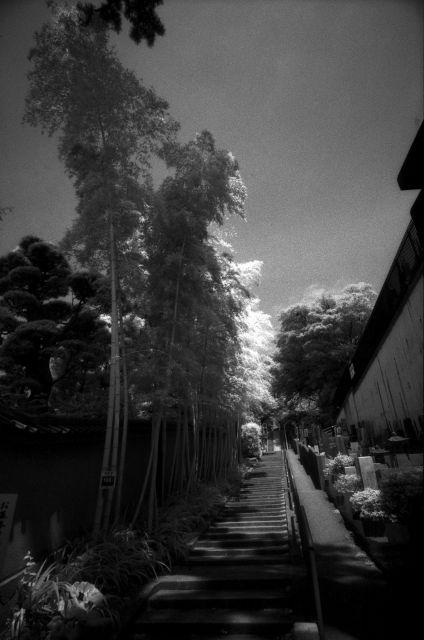 梅雨明け間近な風景01e