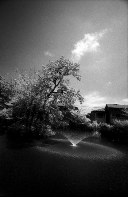 梅雨明け間近な風景01c