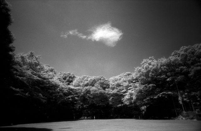 梅雨明け間近な風景01b