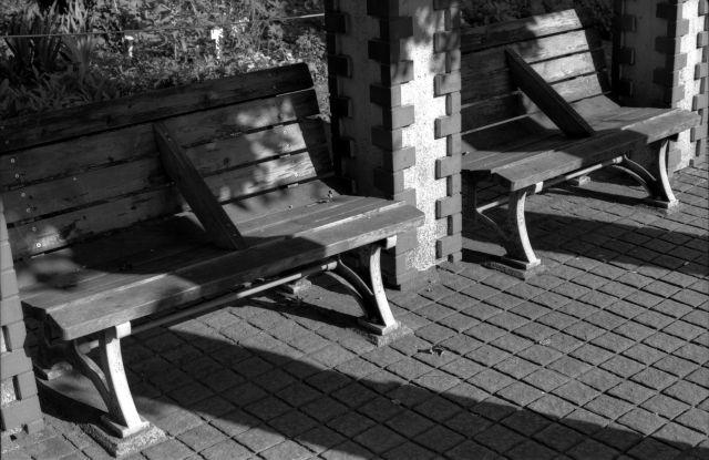 朝の公園01b