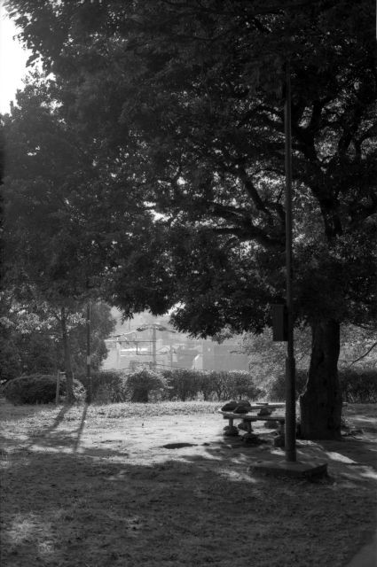 朝の公園01a