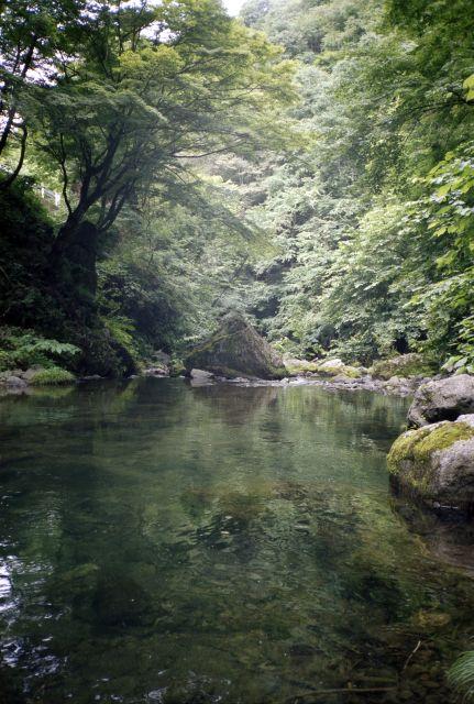 神流川2011-01d