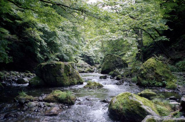 神流川2011-01b
