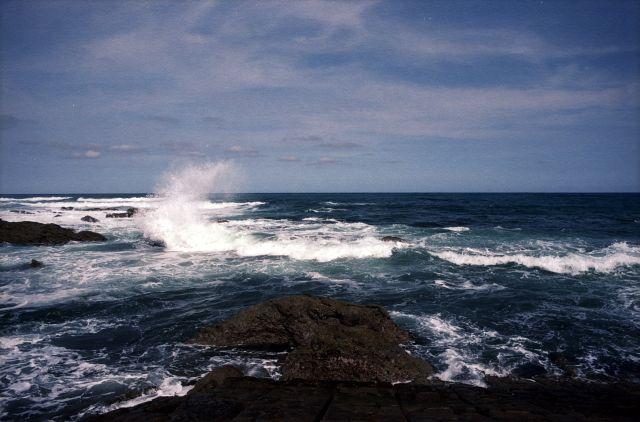 海水浴2011-01c