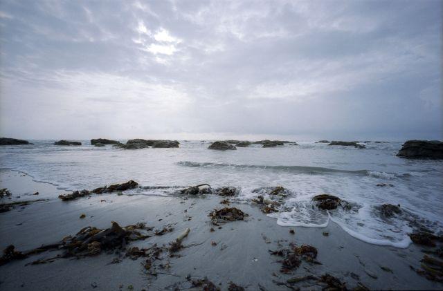 浜辺の朝散歩01a