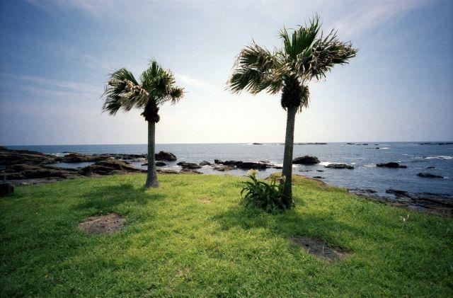 浜辺の観光01c