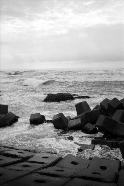 浜辺の朝散歩02a