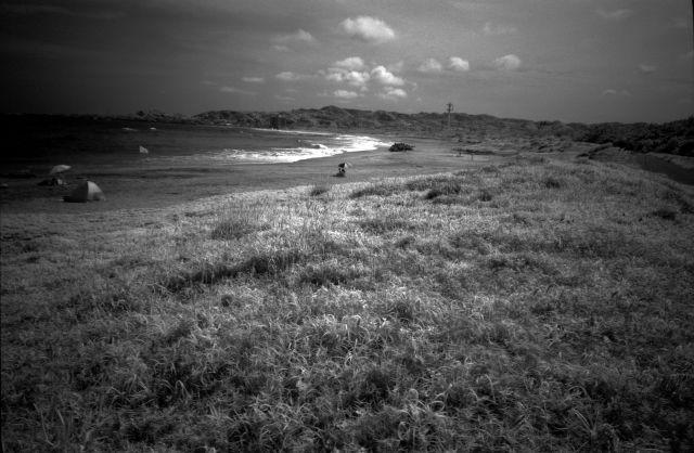 浜辺でIR01d