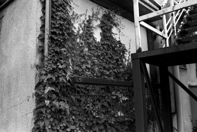 昭和の窓19e