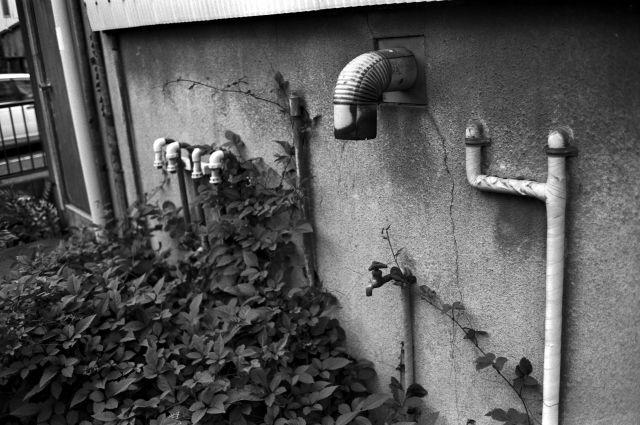 昭和の窓19f