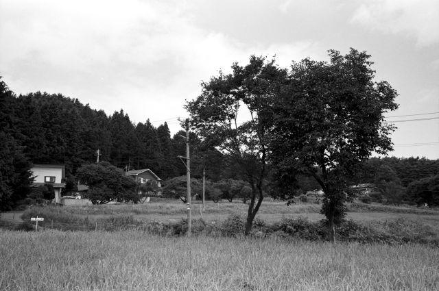 伊那の風景01d