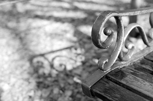 いちょう並木のベンチ01a