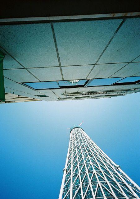 Skytree20100220