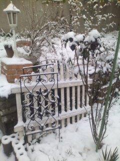 snowgarden1
