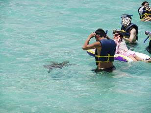 snorkel12