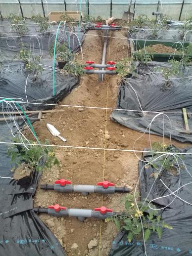 20100513_灌水パイプ埋設中