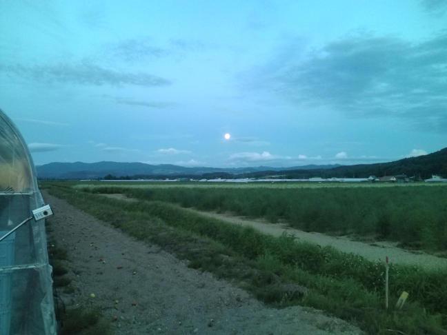 20100725_満月