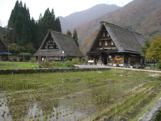 20101113_五箇山菅沼集落1