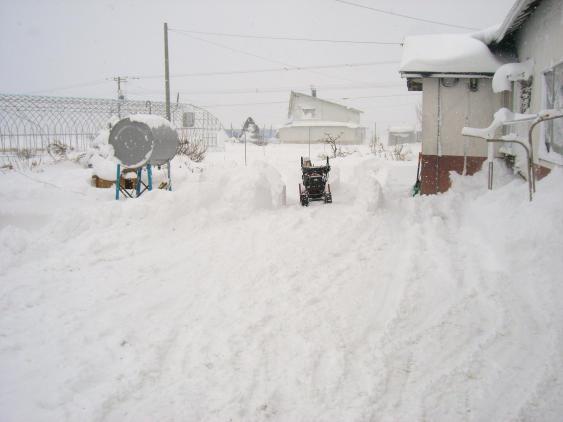 20101129_除雪中