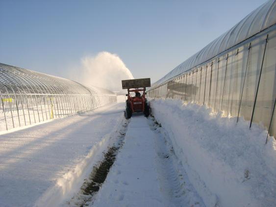 20101202_除雪中2
