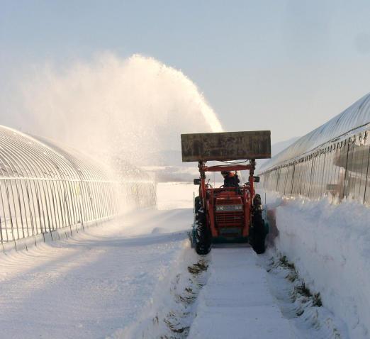 20101202_除雪中1-1