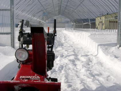 20110206_除雪2.jpg