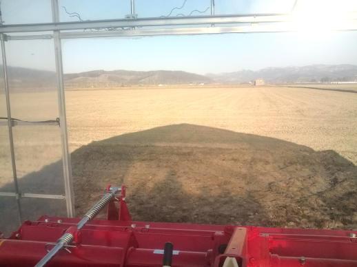 20110414_隣の小麦畑