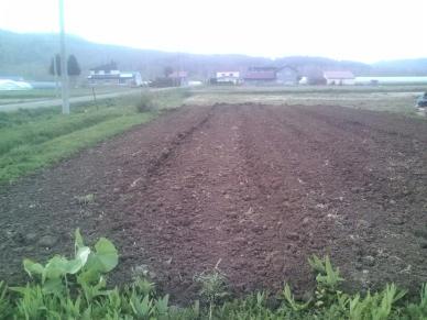 20110519_自家用畑耕起後