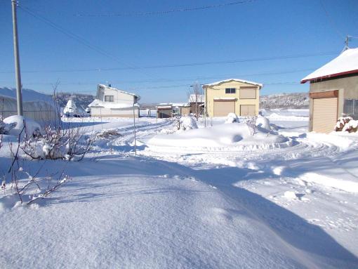 20111218_-10℃快晴