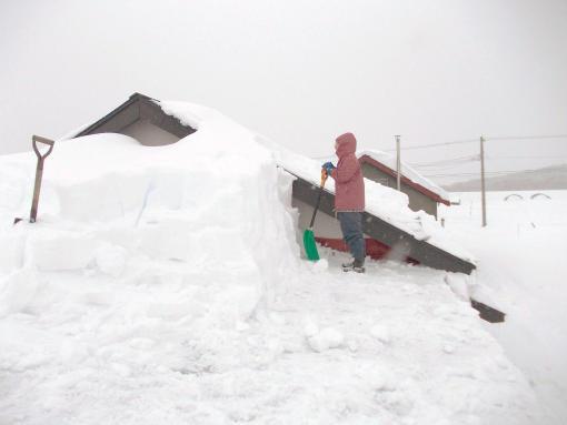 20120106_格納庫の雪下ろし2