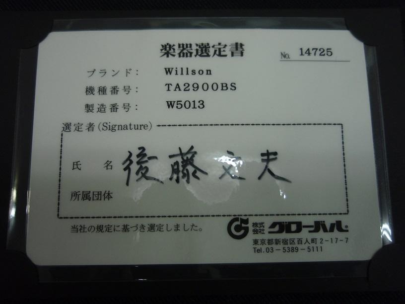 P3130041.jpg