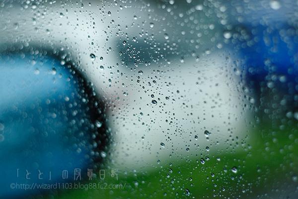 2010長雨