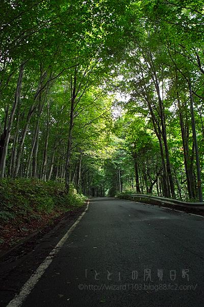 十和田湖への道1