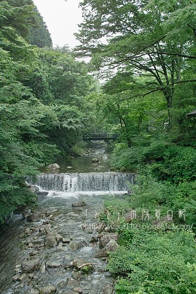 2010_0711.jpg