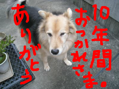 snap_wonderfullif365_201211214618.jpg