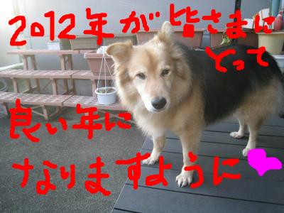 snap_wonderfullif365_201212121422.jpg
