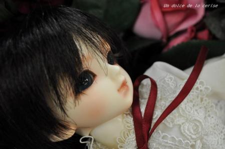 173_20101114204342.jpg