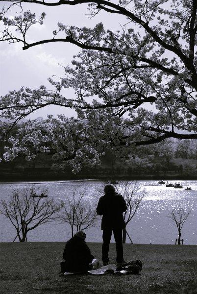 100405志高湖-3