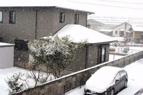 110117大雪-1