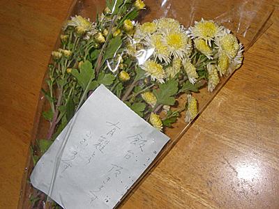 126-flower.jpg