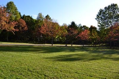 20140927 春光台公園グリーンスポーツキャンプ場 (41)