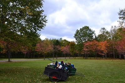 20140927 春光台公園グリーンスポーツキャンプ場 (88)