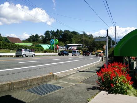20140914_green.jpg