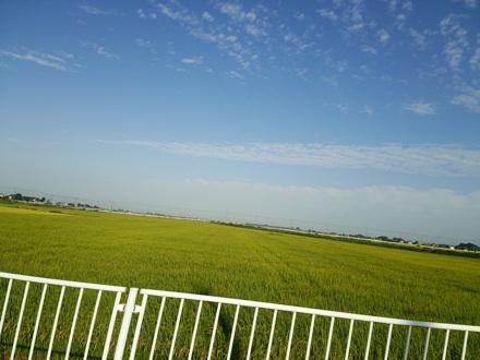 20140927_tanbo1.jpg