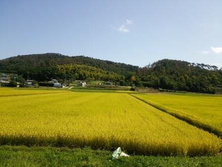 20140927_tanbo3.jpg