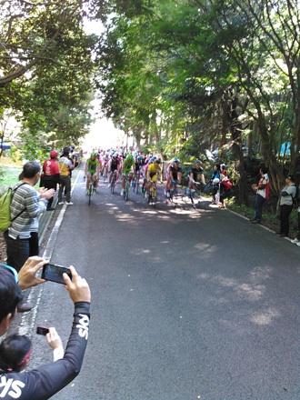 20141019_race05.jpg