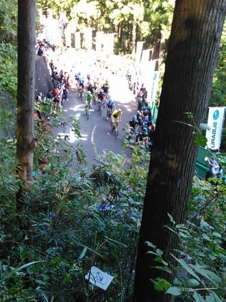 20141019_race08.jpg