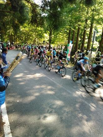20141019_race12.jpg