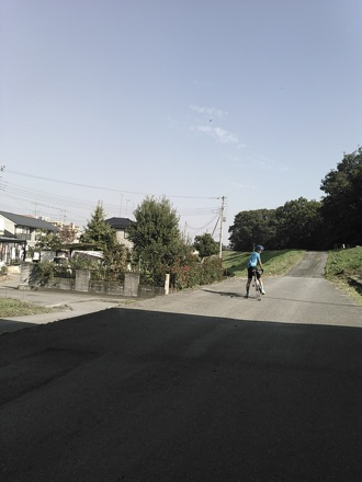 20141025_arasai3.jpg