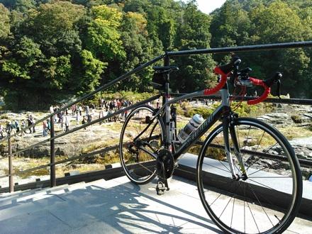 20141025_iwadatami1.jpg